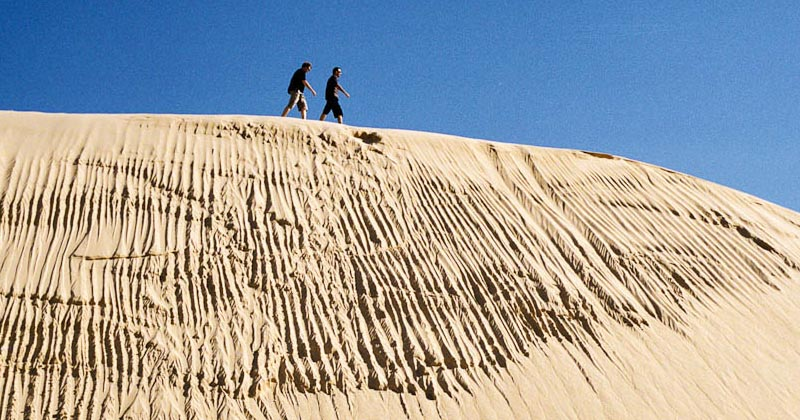 Sand Dune Adventures in Williamtown